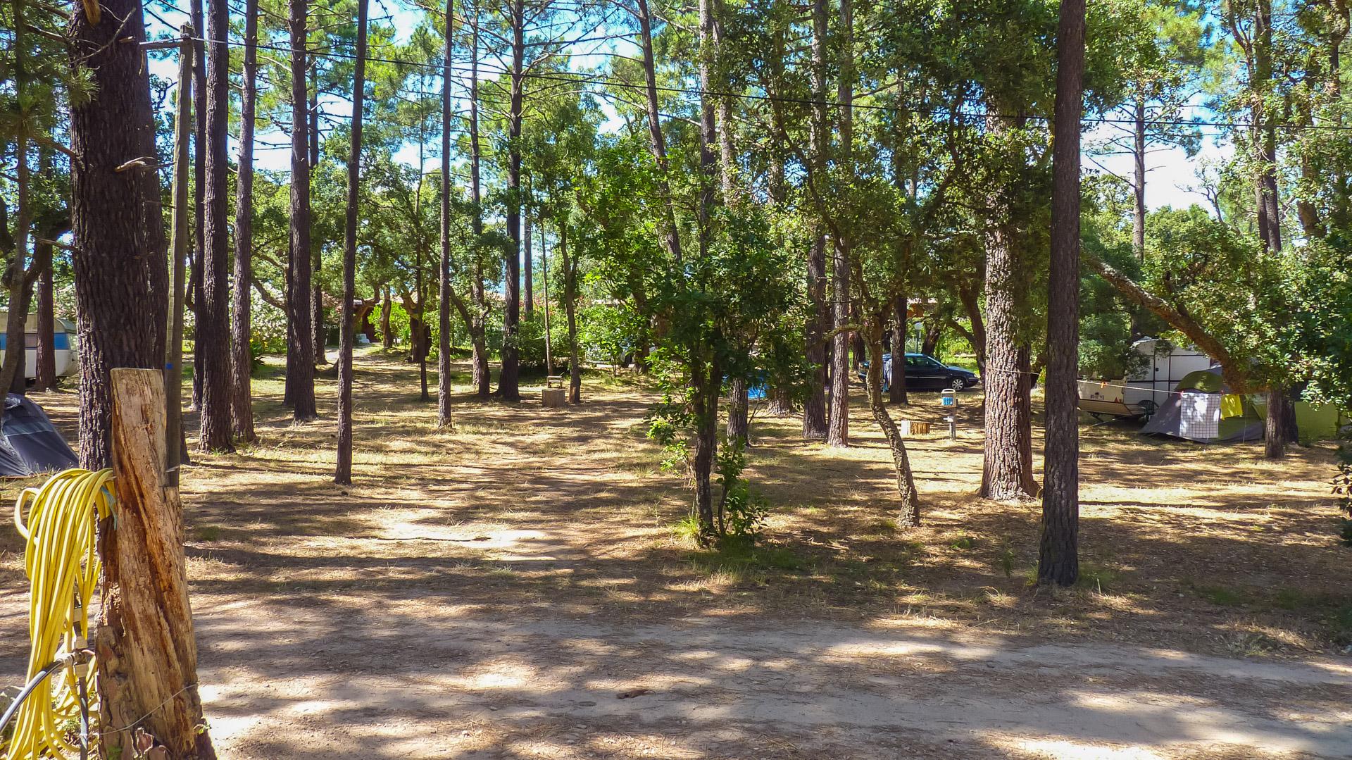 Camping Arutoli