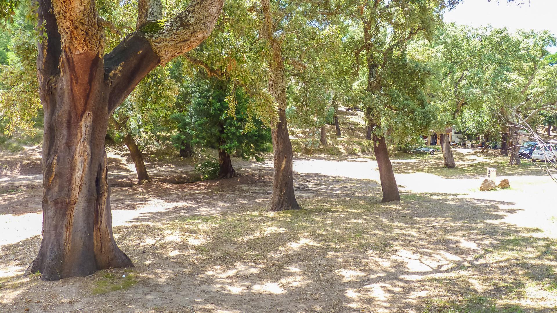 Camping La Vetta
