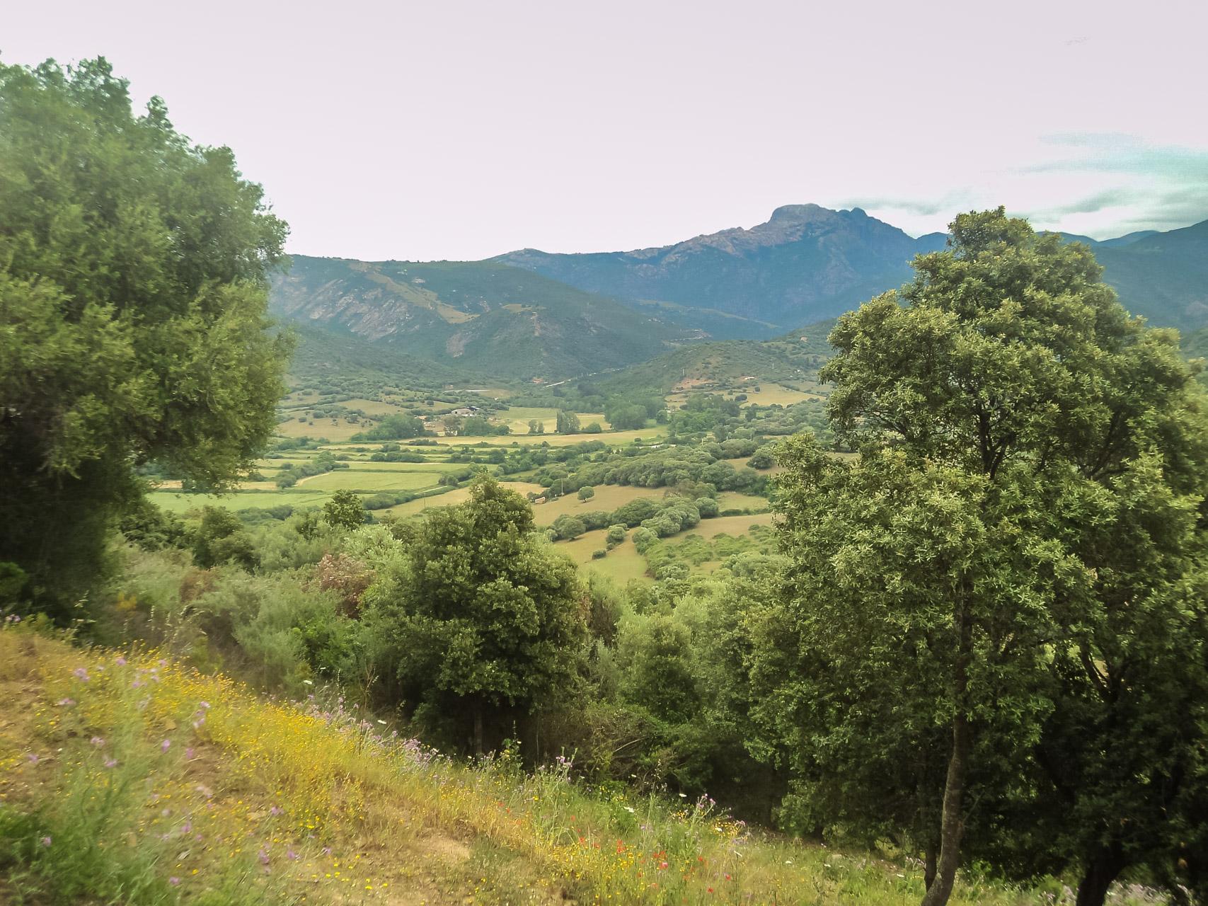Camping Torraccia