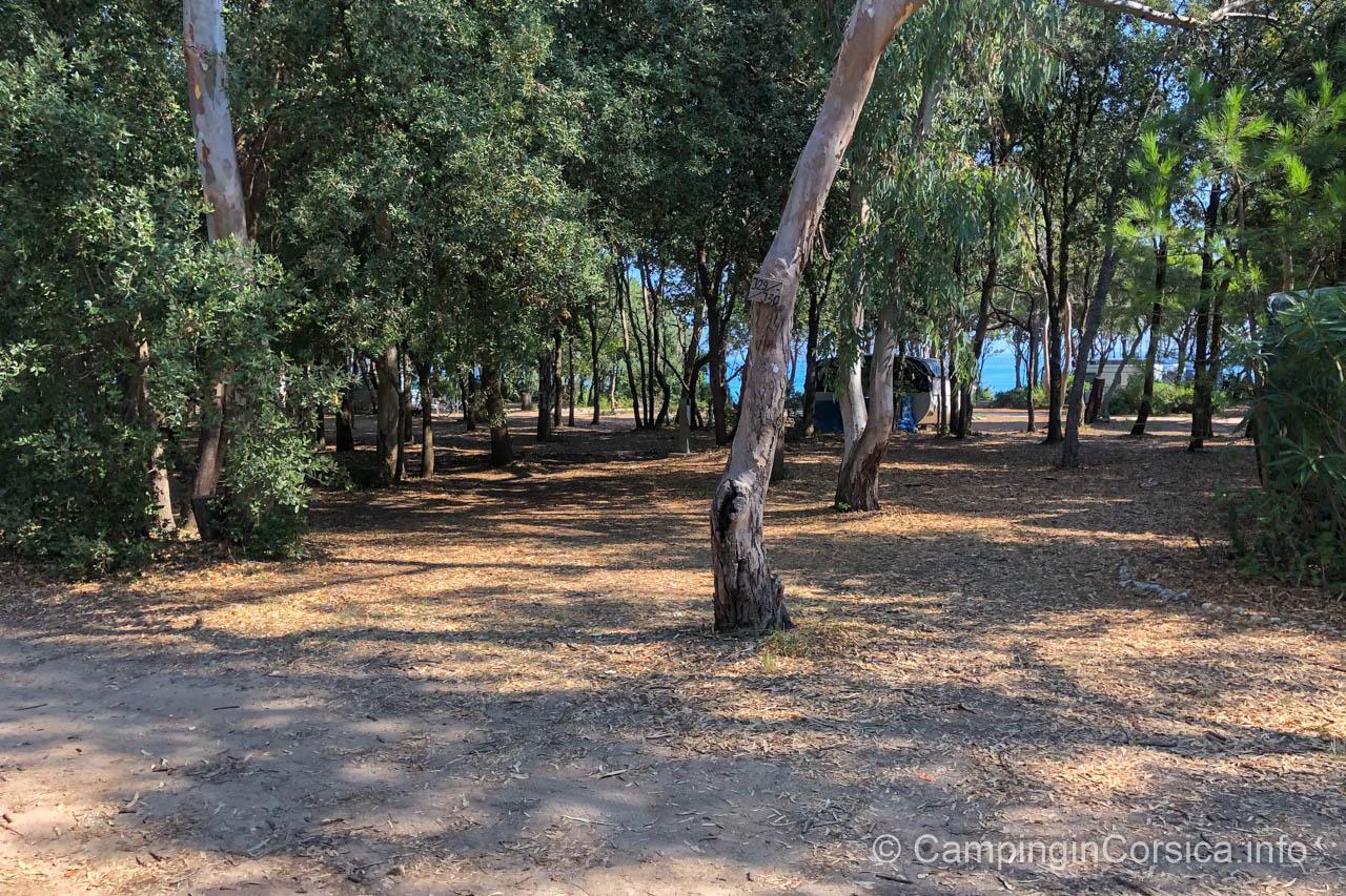 Camping Domaine de Bagheera