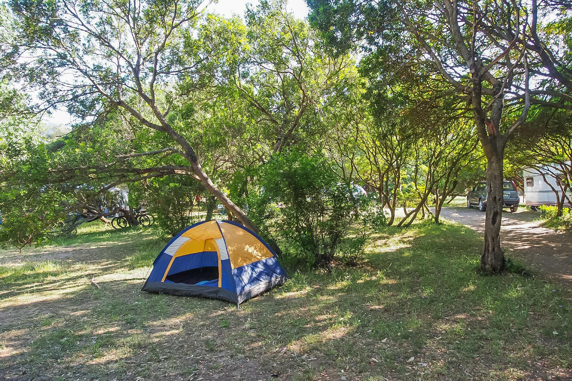 Camping Idéal