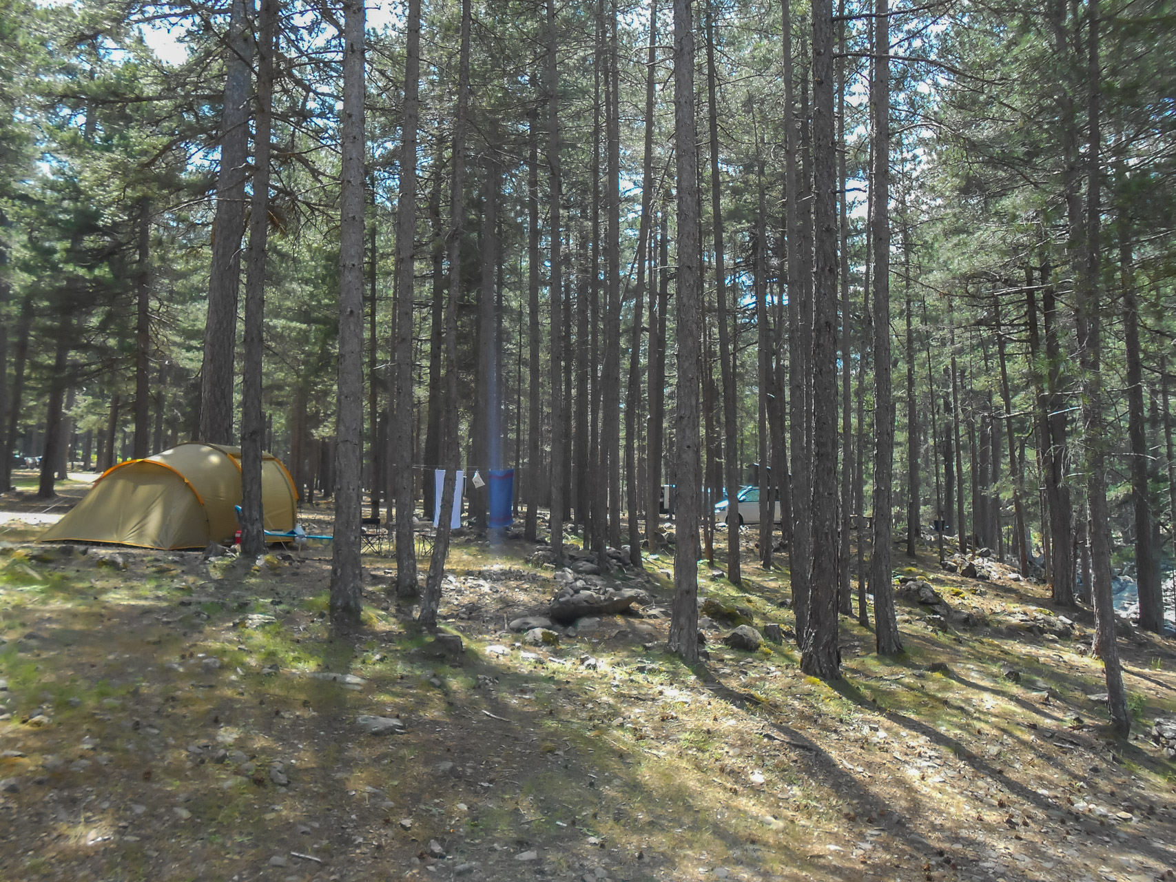 Camping Monte Cinto