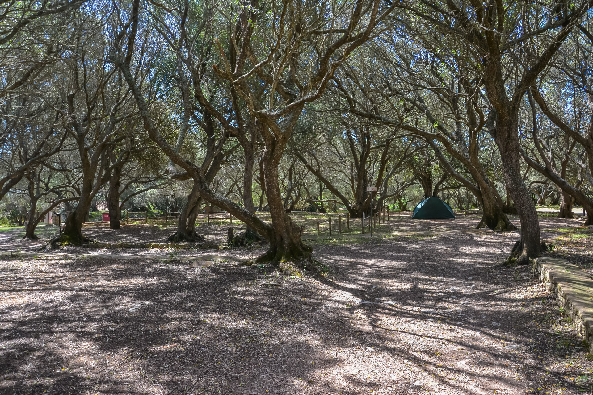 Camping Pian del Fosse