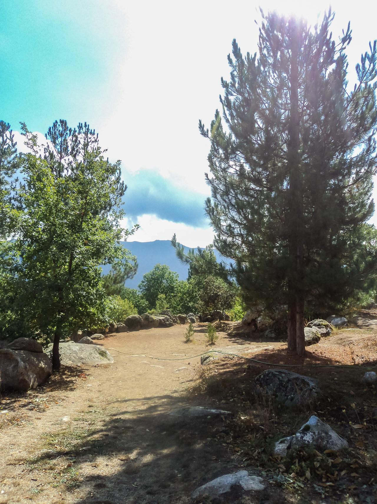 Camping U Monte Cintu