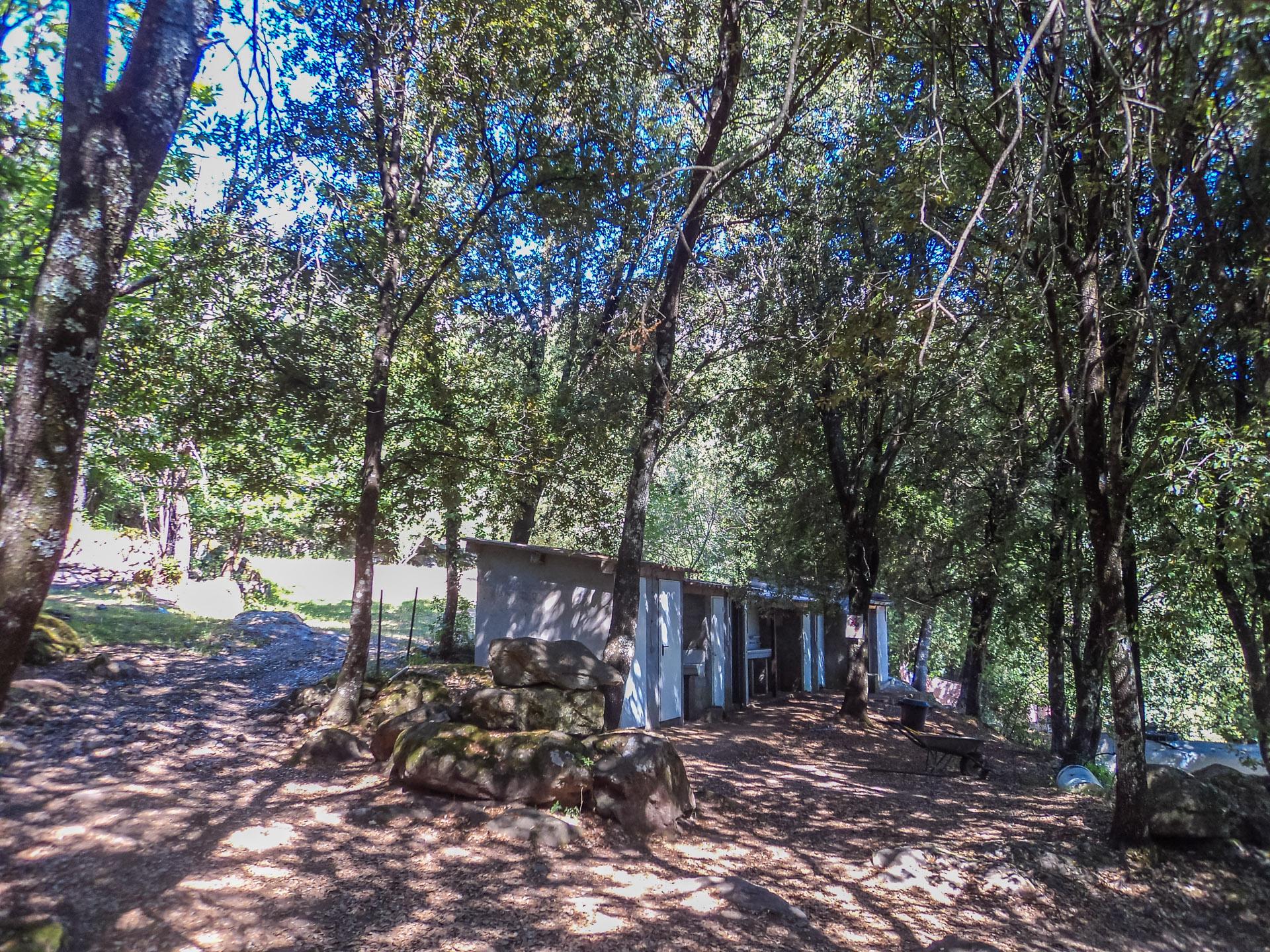 Camping U Tavignanu