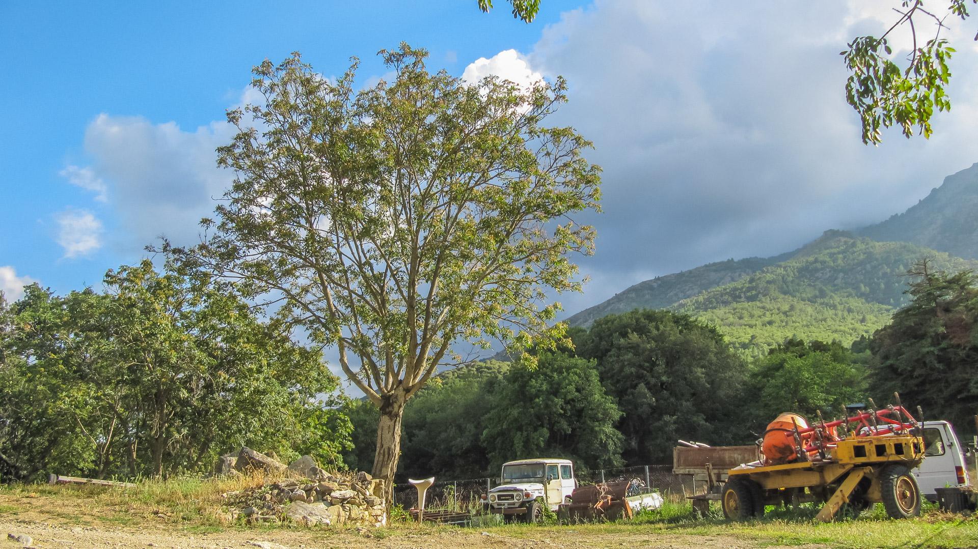 Camping L'Albadu