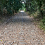Römerstrasse bei Ghisonaccia
