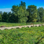 Römischer Viadukt bei Moriani