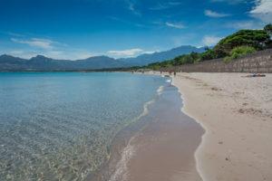 Schönster Strand von Korsika Calvi