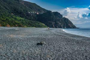 Schönster Strand Korsikas Nonza