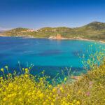 Westküste bei Cargèse
