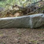 Korsikas grösste Menhirstatue Santa Naria
